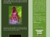 green-o-blog, Le blog de green-o-rama sur l eco-design..._ Valerie Pache une _eco-creatrice_de haut vol