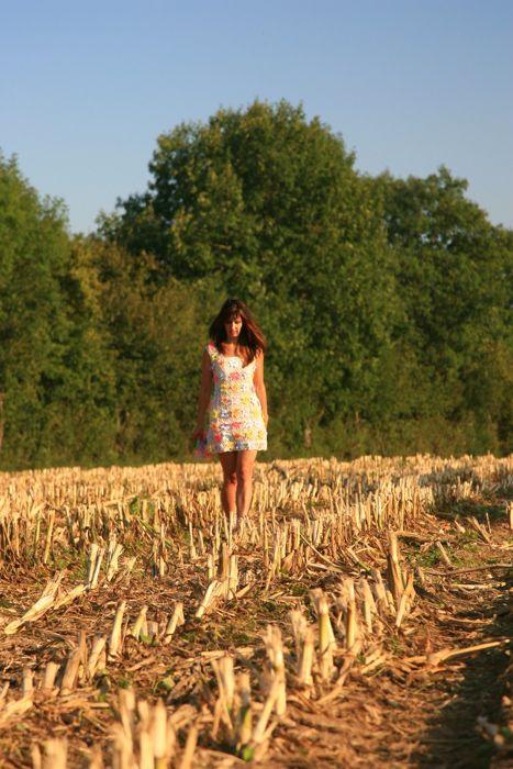 Fée des champs